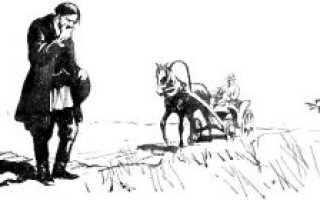 Прочитать лошадиная фамилия. Чехов А. П. Лошадиная фамилия Чехова читать сюжет