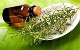 Масло чайного дерева при ожогах применение. Эфирное масло чайного дерева — свойства и применение. Масло чайного дерева — противопоказания к применению