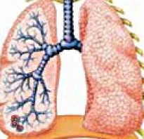 Симптомы пневмонии у детей 12 лет. Какими симптомами проявляется воспаление легких у детей? Лечение пневмонии у детей