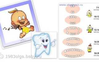 Первый зуб у ребенка признаки. Чем помочь ребенку, когда у него режутся зубки