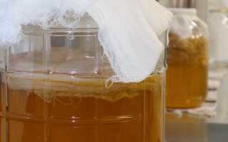 Чайный гриб чудо-целитель, в чем его уникальность и лечение им. Лечение органов дыхания чайным грибом Чайный гриб от горла