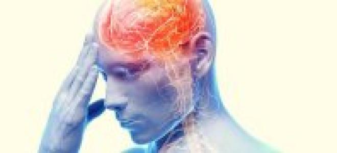 Стимуляторы памяти и мозговой активности. Препараты улучшающие мозговое кровообращение и память