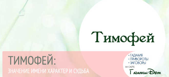 Происхождение имени тимофей и его значение. Происхождение имени тимофей и его значение Узнать вес котенка без весов