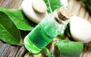 Полезные свойства чайного дерева. Масло чайного дерева
