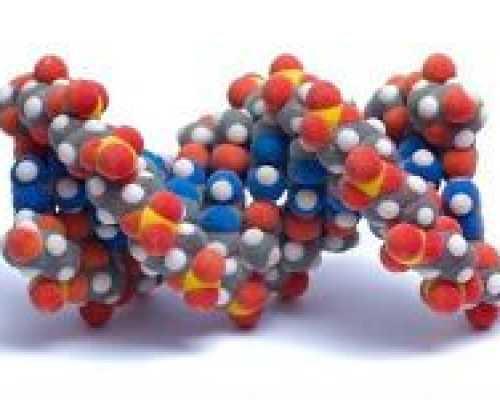 Какие существуют препараты гормонов поджелудочной железы. Гормональные препараты поджелудочной железы Препараты гормонов поджелудочной