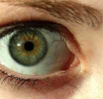Зеленые глаза у женщин: значение цвета для характеристики личности. Значение зеленых глаз У каких людей зеленые глаза