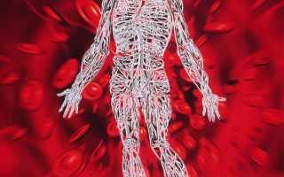 Как улучшить кровообращение сосудов мозга с помощью препаратов. Как улучшить мозговое кровообращение мнение врача Кровли циркулирует головного мозга что делатьДиагностика][