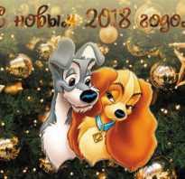 Фотографии собак к новому году