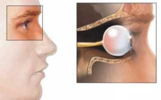Зрительный перекрест. Строение и функции зрительного нерва Перекресток зрительных нервов