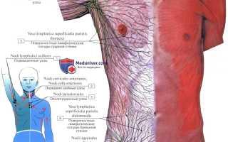 Лимфатические узлы брюшной полости анатомия. Забрюшинные лимфатические узлы: анатомия, лечение воспаления. Поражение органов брюшной полости