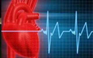 Ритмичность сердцебиения и пульса – что это такое? Какой нормальный пульс у человека Основные характеристики пульса.Диагностика][