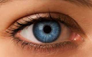 Зрительный анализатор гигиена зрения. Зрительный анализатор и его гигиена. Как происходит восприятие и передача зрительной информации