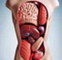 Куда поступает сок поджелудочной железы. Ферменты сока поджелудочной железы. Нервно-гуморальный механизм выделения поджелудочного сока