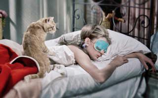 Ваш характер по питомцу: собак любят смелые, котов – умные. Ваш характер по питомцу: собак любят смелые, котов – умные Кто больше нравится собака или кот