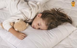 Что необходимо ребенку для здорового сна. Полноценный хороший сон – залог здоровья детей (система, правила и важность)Быт][