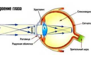 Путь прохождение света через глаз. Почему мы видим удаленные предметы так хорошо. Огромное количество деталей
