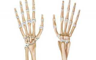 Закрытый перелом шиловидного отростка правой лучевой кости. Шиловидный отросток локтевой кости: его расположение и назначение. Анатомических после перелома