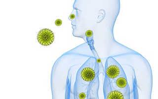 Респираторная аллергия у детей. Дыхательная аллергия: причины, симптомы и лечение. Основные причины развития аллергозов