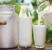 Чем отличается кефирный продукт от кефира. В чем отличия молочного напитка от молока, кефирного продукта от кефира? Мнения экспертов